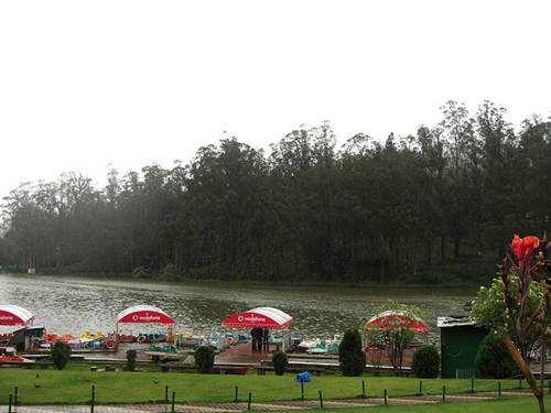 Mouthwatering Delicacies of Restaurants in Ooty 2